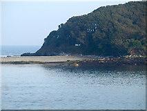 SX2551 : Looe Island by Derek Harper