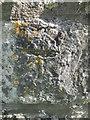 SS4992 : Ordnance Survey Cut Mark by Adrian Dust