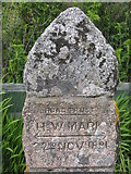 NM8312 : High water mark at Melford [detail] by M J Richardson
