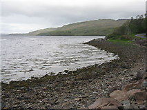 NM8312 : Shore of Loch na Cille by M J Richardson