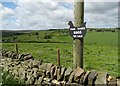 SK0664 : Free range eggs sign and view to Marnshaw Head by Neil Theasby