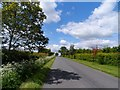 TL0465 : Straight section of minor road near Swineshead by Bikeboy