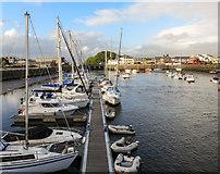 SH5638 : Porthmadog by Peter McDermott
