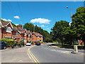 TQ6195 : Alexander Lane, Shenfield by Malc McDonald