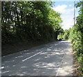 ST6333 : Ansford Hill, Ansford by Jaggery