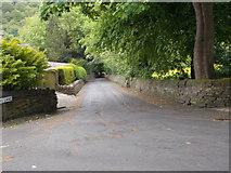 SE0421 : Stubbing Lane - viewed from Dean Lane by Betty Longbottom