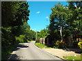 TL6000 : Ingatestone Road, near Blackmore by Malc McDonald