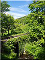 SE0024 : Spa Bridge in Cragg Vale by Trevor Littlewood