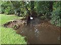 SP1582 : Erosion and deposition, brook in Elmdon Park, Olton by Robin Stott