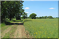 TL7937 : Footpath on farm track alongside oilseed rape field, Gestingthorpe by Roger Jones