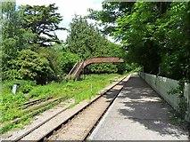 SO6302 : Iron bridge by Gill