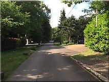 TQ1952 : Box Hill: Headley Heath Approach by Jonathan Hutchins
