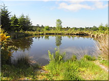 H5475 : Fishing pond, Oxtown by Kenneth  Allen