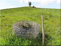 H5575 : Roll of wire, Altdrumman by Kenneth  Allen