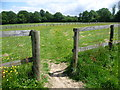 TQ4558 : Footpath at Horns Green by Marathon