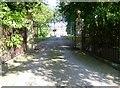 SJ4452 : Entrance gates to Stretton Hall by Eirian Evans