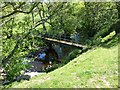 NU0022 : Footbridge over the Lilburn Burn by Russel Wills