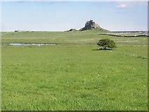 NU1341 : Lindisfarne Castle by Roger Cornfoot
