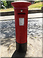 TG1909 : Cadge Road Postbox by Geographer