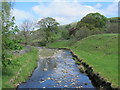 NY8548 : The River East Allen north of the Corn Mill by Mike Quinn