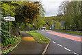 SD3786 : Newby Bridge by Ian Capper
