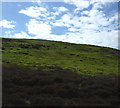 NZ6805 : Danby High Moor by JThomas