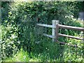 SK3917 : Overgrown stile by Ian Calderwood