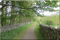 NS6725 : River Ayr Way, Upper Wellwood by Richard Webb