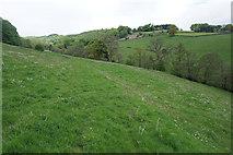 SK2377 : Field above Goatscliff Brook by Bill Boaden