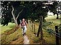 SJ2536 : Uwchben / Above Bron y Garth by Alan Richards
