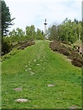 NZ1759 : View of the Northern end of the Avenue of trees at Gibside by Derek Voller