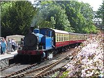SD3787 : Lakeside & Haverthwaite Railway by Gareth James