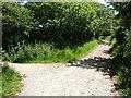 SZ7999 : Salterns Way - Sheepwash Lane path junction by Rob Farrow