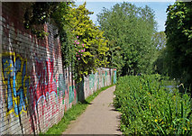 SP5007 : Graffiti covered wall along the Oxford Canal by Mat Fascione