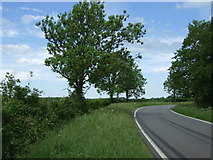 TL2657 : A bend in Eltisley Road by JThomas