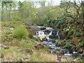 NU0901 : Black Burn Falls, Cragside Estate, Northumberland by Derek Voller