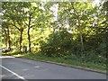 SU8466 : Old Wokingham Road, Crowthorne by David Howard