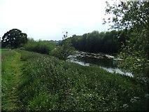 SO5635 : River Wye by David Brown
