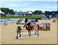 SJ4956 : Bolesworth International Horse Show: International Arena by Jonathan Hutchins