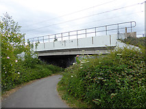 NZ3557 : Cycle path passing under the Metro extension to South Hylton by Oliver Dixon