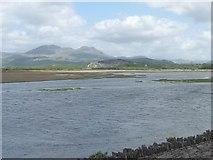 SH5738 : Corsydd Afon Glaslyn marshes by Christine Johnstone