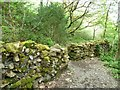 SH6541 : Footpath crossing wall, Coed Llyn Mair by Christine Johnstone