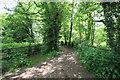SJ5966 : Footpath to Little Budworth by Jeff Buck