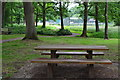 SU9251 : Picnic table at Normandy Common by David Martin