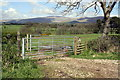 NY6524 : Gateway on NW side of minor road near Powis House by Roger Templeman