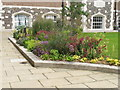 TQ3082 : Flower bed, London House, Goodenough College by David Hawgood