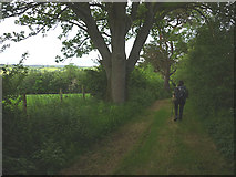 NY6715 : Track on Mill Moor by Karl and Ali