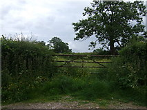 SK2640 : Field entrance near Over Burrows by JThomas
