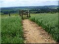 TR0746 : Footpath emerges on to Wye Downs by Marathon