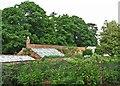 SK3722 : Calke Abbey: kitchen garden by John Sutton